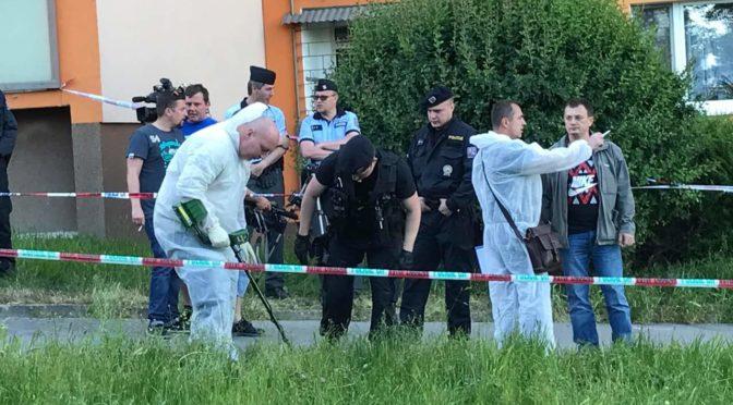 Romská pieta probíhala jako ta v Žatci. Romové vyhrožovali policistům