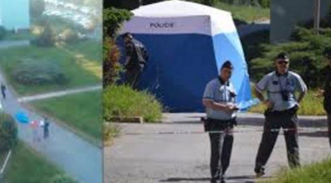 Oficiální policejní vyšetřování potvrdilo, že zastřelený Rom v Chomutově skutečně najížděl do lidí