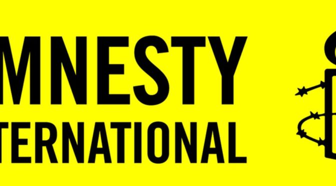 Amnesty International šíří poplašnou zprávu o ústavní novele o zbraních